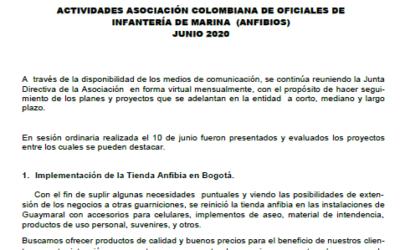 IMFORMADOR NR. 168 ANFIBIOS 2020